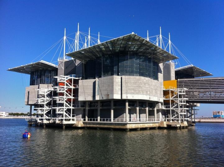 Actividades Lisboa - Oceanário Lisboa