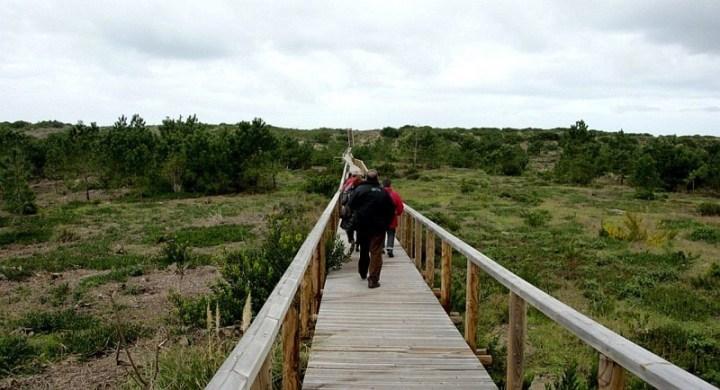 Reserva-Natural-das-Dunas-de-Sao-Jacinto