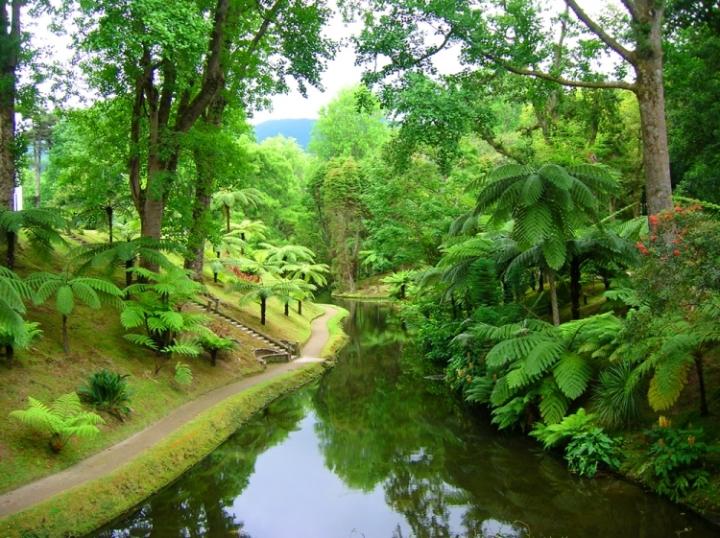 Açores - Parque Terra Nostra