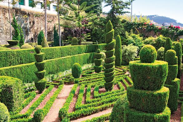 jardim botanico Madeira1