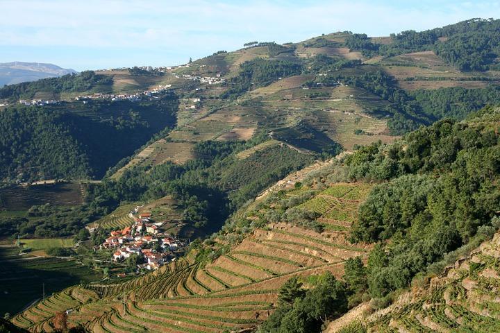 vila-real-Santa_Marta_de_Penagui∆o_Alto_Douro_Vinhateiro